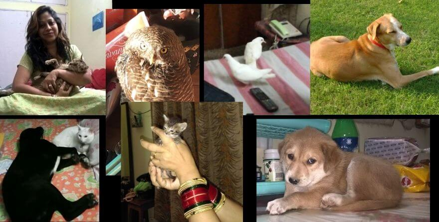ranjeeta nath with pets